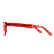 GEEK Eyewear Trendy Readers