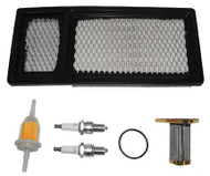 Deluxe EZGO Tune Up Kit 295/350cc - Including Belts