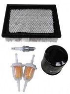 Deluxe Club Car DS Tune Up Kit 2004 and Up - Including Belts