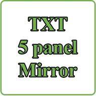 EZGO TXT 5 Panel Mirror Installation Video