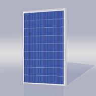 Risen Energy SYP210P 210 Watt Solar Panel Module image