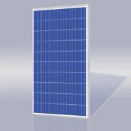 Risen Energy SYP245S 245 Watt Solar Panel Module image