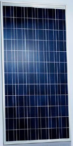 Schott Poly 165 Watt Solar Panel Module (Discontinued)