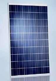 Schott Poly 225 Watt Solar Panel Module (Discontinued) image