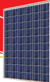 Sunrise SR-P660 245 Watt Solar Panel Module image