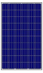 Amerisolar AS-6P30-250W 250 Watt Solar Panel Module Image