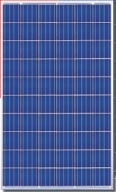Canadian Solar CS6X-310P 310 Watt Solar Panel Module Image