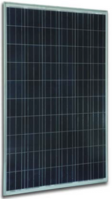 Solar Innova SI-ESF-M-P156-66 265 Watt Solar Panel Module Image