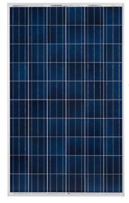 Luxor Eco Line P60 LX 250 Watt Solar Panel Module