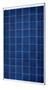 SolarWorld SunModule Plus SW 250 Poly 250 Watt Solar Panel Module