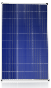 Canadian Solar Diamond CS6K-265P-FG 265 Watt Solar Panel Module