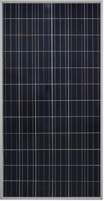 Gintech Energy GIN-P6-72-300 300 Watt Solar Panel Module