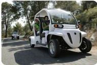 GEM e4 Electric Vehicle Image