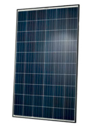Q Cells Q.PLUS-BFR-G4.1-285 285W Poly Q Plus G4.1 Black Frame Solar Panel Module