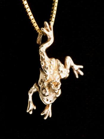 Enchanted Frog Charm - 14K Gold