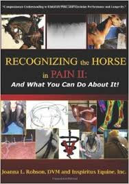 Recognizing the Horse in Pain II:  And What You Can Do About It!