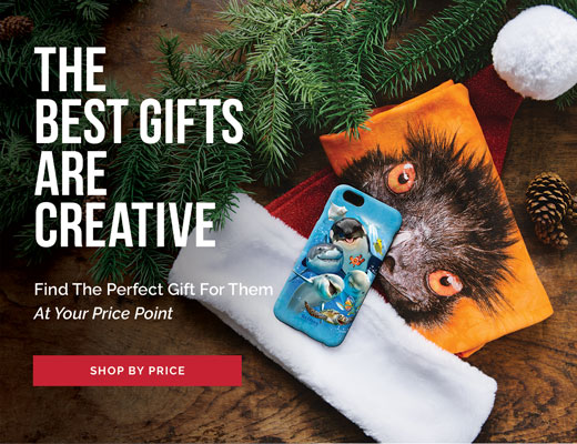 Shop the Mountain Gift Guide