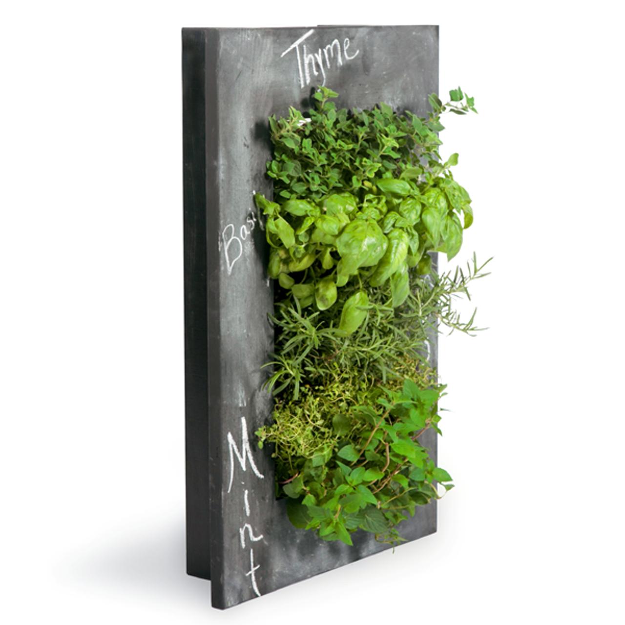 Grovert living wall planter chalkboard frame kit for Living wall planter