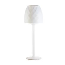Vases Floor Lamp