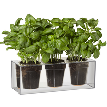 Triple Cube Planter