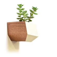 Sidecar Wall Planter- Walnut and White