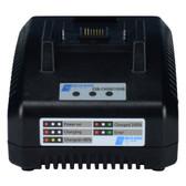 Delta Regis ESB-CHG80/1950B Battery Charger, 90 - 240 VDC In, 21VDC, 3.2A Out