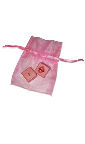 Dirty Dice game with keepsake pink organza bag. Features pink dice, one has body parts listed, the other has actions.