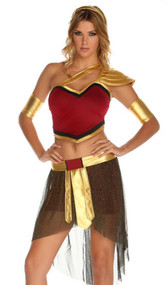Warrior costume includes top, skirt, headband and arm bands. Four piece set.