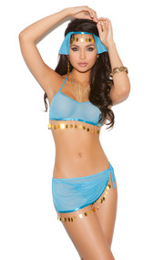 Harem Hottie costume set includes: Mesh halter top with fringe detail, side tie skirt, head piece, and g-string. Four piece set.