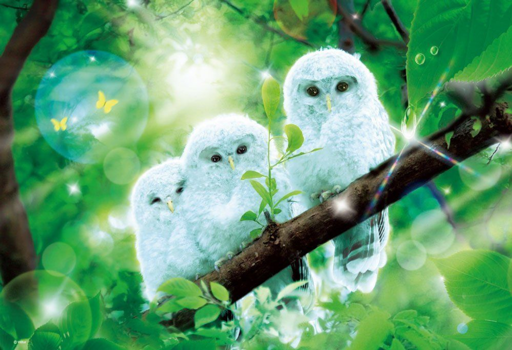 Beverly Jigsaw Puzzle M81-534 Fantasy Art Owls (1000 S-Pieces)