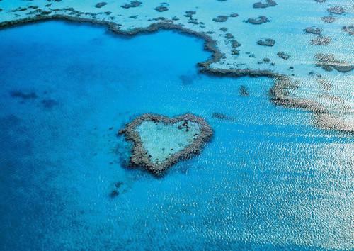 Epoch Jigsaw Puzzle 01-058 Great Barrier Reef Australia (108 Pieces)