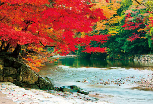 Beverly Jigsaw Puzzle 51-231 Autumn Leaves Isuzu River Ise Jingu Shrine (1000 Pieces)
