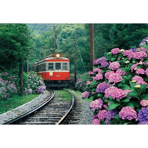 Epoch Jigsaw Puzzle 26-217 HakOne Moutain Railway Japan (300 Pieces)