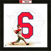 Stan Musial St. Louis Cardinals 20x20 Framed Uniframe Jersey Photo