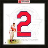 Red Schoendienst St. Louis Cardinals 20x20 Framed Uniframe Jersey Photo