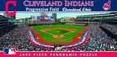 Cleveland Indians Panoramic Stadium Puzzle