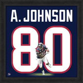 Andre Johnson Houston Texans 20x20 Framed Uniframe Jersey Photo