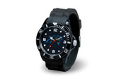 Carolina Panthers  Spirit Watch