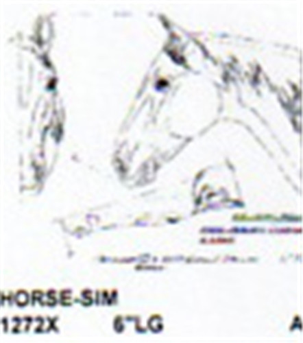 Horse head only quot long carving pattern