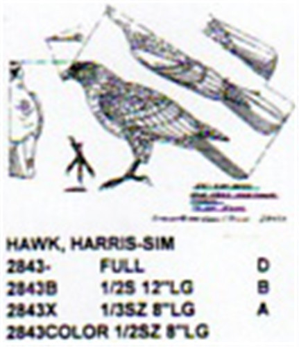 Harris Hawk Carving Pattern