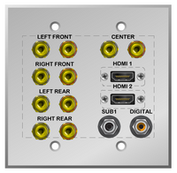 Custom 5.1 Speaker and Sub Woofer Wall plate with Dual HDMI and Coax RCA Digital Audio