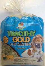 APD Timothy Gold