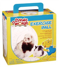 Exercise Ball Large