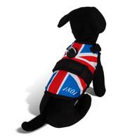 Avant Garde Dog Harness,London Calling