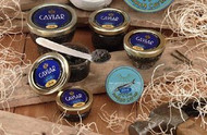 American Caviar Sampler Gift Set - Paddlefish, Bowfish, Hackleback, Russian Blinis, and Crème Fraiche