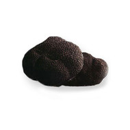 French Winter Perigord Black Truffles Whole Frozen 1 lb