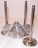 Severe Duty Stainless Steel Valves 17724