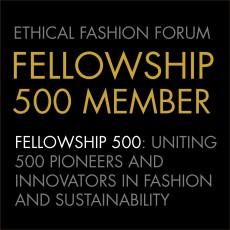 fellowship-500-logo.jpg
