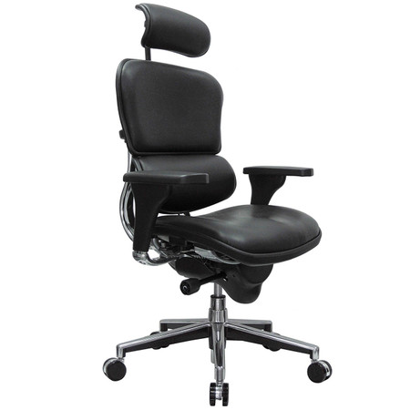 Eurotech Ergohuman High Back Leather Chair in Black