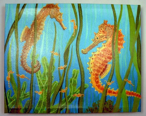 Sealife Sea Horses Swimming in Seaweed Giclee Canvas Gallery Wrap 15X12 Inches